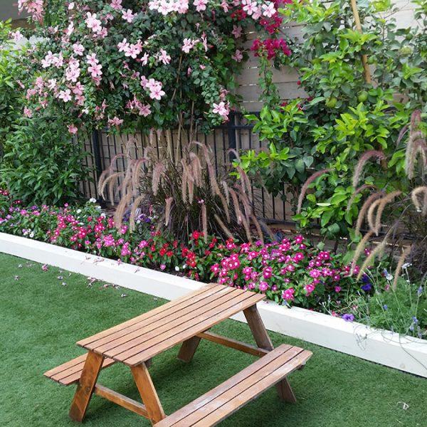עיצוב חוץ בית פרטי - מדשאה