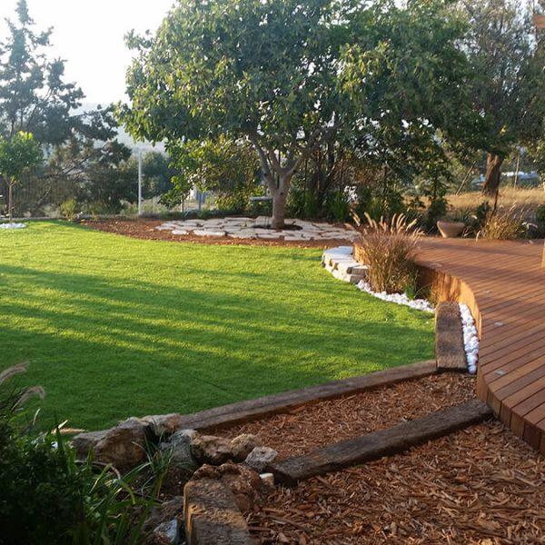 גינה גדולה - םרגולה, דקים, דשא